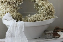 hydrangea: home design / hydrangea beautify your house and make it your home / by Ina Korevaar