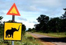 Zimbabwe / Parachtige locaties in Zimbabwe