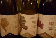 tasting Lyrarakis wines / wine tasting