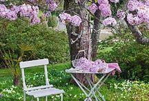 Nápady do domu a záhrady