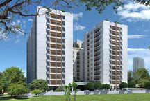 Navin's Whiteberry / 224 Upartments That Will Upgrade Your Investment !