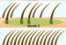 tratamientos para el cabello