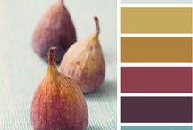 Colours palette - Design seeds