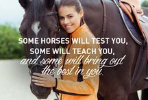 Dressage horses/Quotes