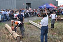 Campionato nazionale boscaioli FIB - Fiera di Sant'Alessandro 2012 / Gara campionato nazionale FIB 2012 presso fiera bergamo - ente fiera promoberg