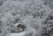 winter dreams of inspiration and future designs