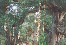 Wedding LOVES- Lighting / by Alysse Sweeney