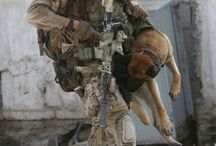 K9 - soldiers with theirs working dogs