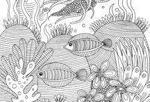 Marine colouring pages