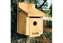Help with your birdhouse / Articles and How To's to help with your birdhouse set up or additions.