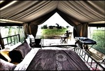 Intimate Places Camping / Luxury mobile camping for the private & exclusive use of your clients (private camp on a private campsite with a private chef and private butler) which you can book anywhere on the Tanzanian Northern Safari circuit. / by Intimate Places Tanzania