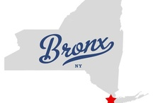 The Bronx / by Helen Dury