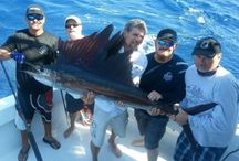 Miami Fishing Charter / Miami deep sea fishing charter is very enjoyable. Custom are outing  the conditions and experience the fishing style. Its mission is to give an outstanding Miami fishing experience deep ocean fishing are close behind abundance like salfish ,marlin, dolphin.