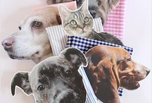 Crafts and Projects for Your Pets / Looking for a great craft or project idea involving your pets - cats, dogs and more? Look no further! Save money, make a gift and more with these ideas.