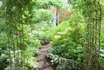 Coola trädgårdsideer