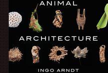 Architectuur bij dieren / Vogelnesten