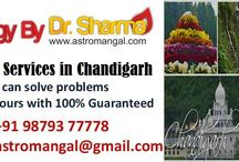 astrologer in Chandigarh / Dr. Sharma is a famous and the best astrologer in Chandigarh Punjab who is continually getting love from people as a result of his selfless services