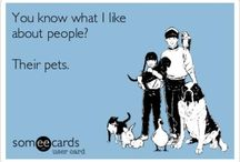 <3 big heart for pets.