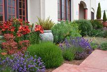 Garden -sissinghurst