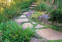 Drought Resistant Landscaping Ideas