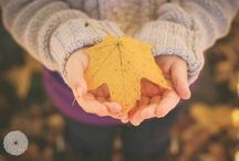 autumn photography idea