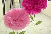 цветы на ножках высокие