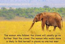 Kudos to all Female Travellers !! Solo travel is always fun and mystery..... #femaletraveller #solo #travel #travelgram #explore #explorer #travelphotography #planner #bespoke