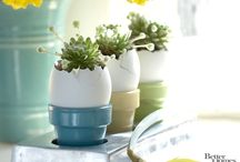 EASTER decorations and centerpieces