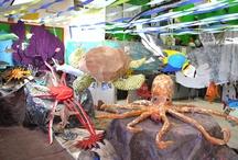 Seventh-Grade Sea Creatures