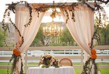Wedding / Alice in wonderland