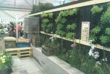 Budget tuin / Garden