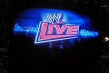WWE LIVE in Japan 2013