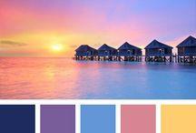 SGL Color Palette
