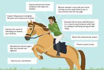 Horse Ride Equitation