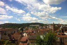 Vosges Forever
