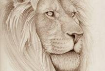 Drawings I like