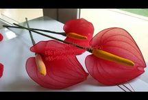 fiori con  i collant