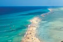 Canaria islands