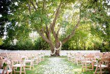 Wedding venues / by Saya Weissman