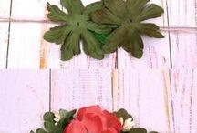 bebe flori