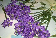 Sartiglia 2014 / L'ultima domenica e martedì di carnevale si svolge a Oristano la Sartiglia