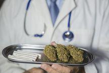 Cannabis, Hanf und Marihuana