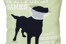 It's All Fun and Games... / Until someone ends up in a cone. / by Dog is Good