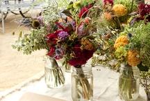 Gardeners We Admire / als-gardencenter.com