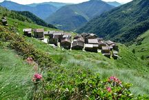 Alpe Deleguaggio - giugno / #hiking #trekking #mountain