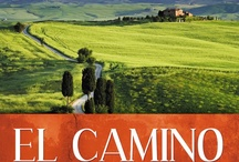 Camino Books, Movies and Media