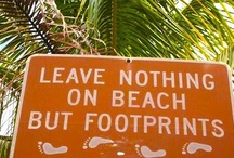 A Day at the Beach / How to get ready for your day at the beach. Ideas for making your life easier. Also, PSA about keeping the beach clean. Take your trash and rubbish home with you.