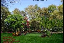 TampaLandscapeDesign.com Architectural Elements: Structures, Water & Fire Elements / Tampa landscape designs include much more than plants.  The next most important element are hardscapes: driveways, paths, walks, pool decks, patios.  Gardens include structures, like decks and pergolas, water features like spas, ponds, creek beds, rain gardens and fountains.  Fire features like fire pits and fire places as well as outdoor kitchen with BBQ grills all enhance the outdoor living experience.