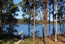 Oak Bluffs Rental on Lagoon