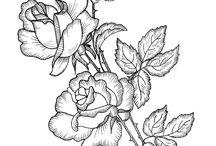 τριαντ 2